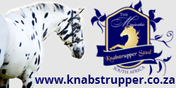 The Majestic Knabstrupper Stud