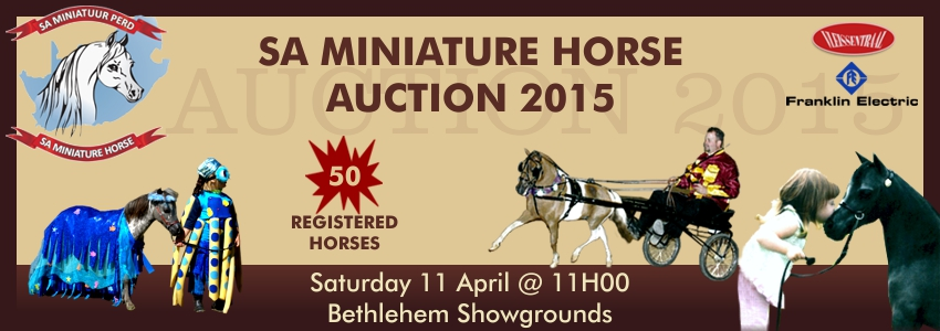 SA Miniature Horse Breeders Society