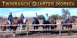 Twinranch Quarter Horse Stud